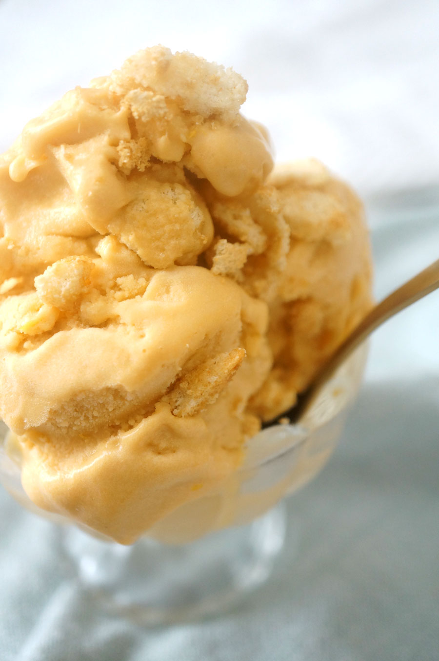 ginger cookie ice cream