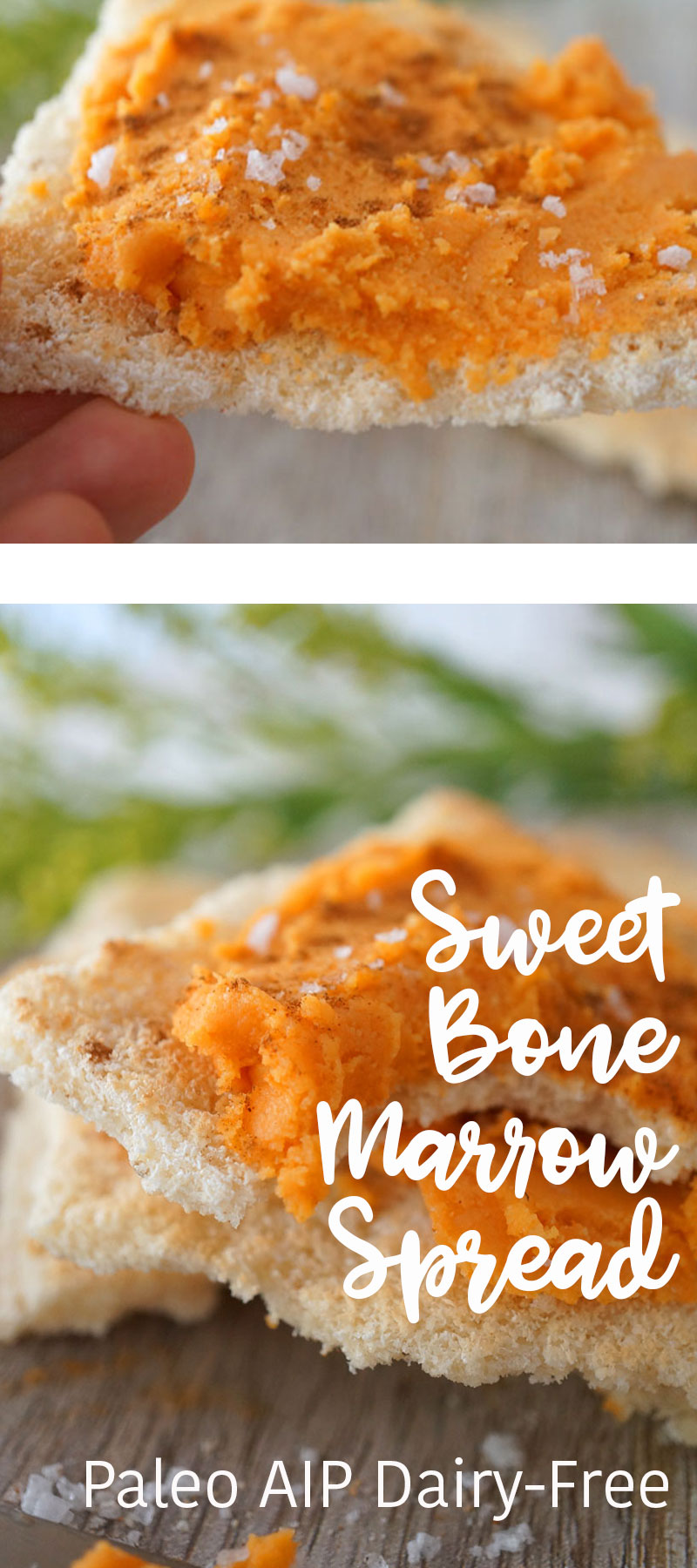 bone marrow paleo