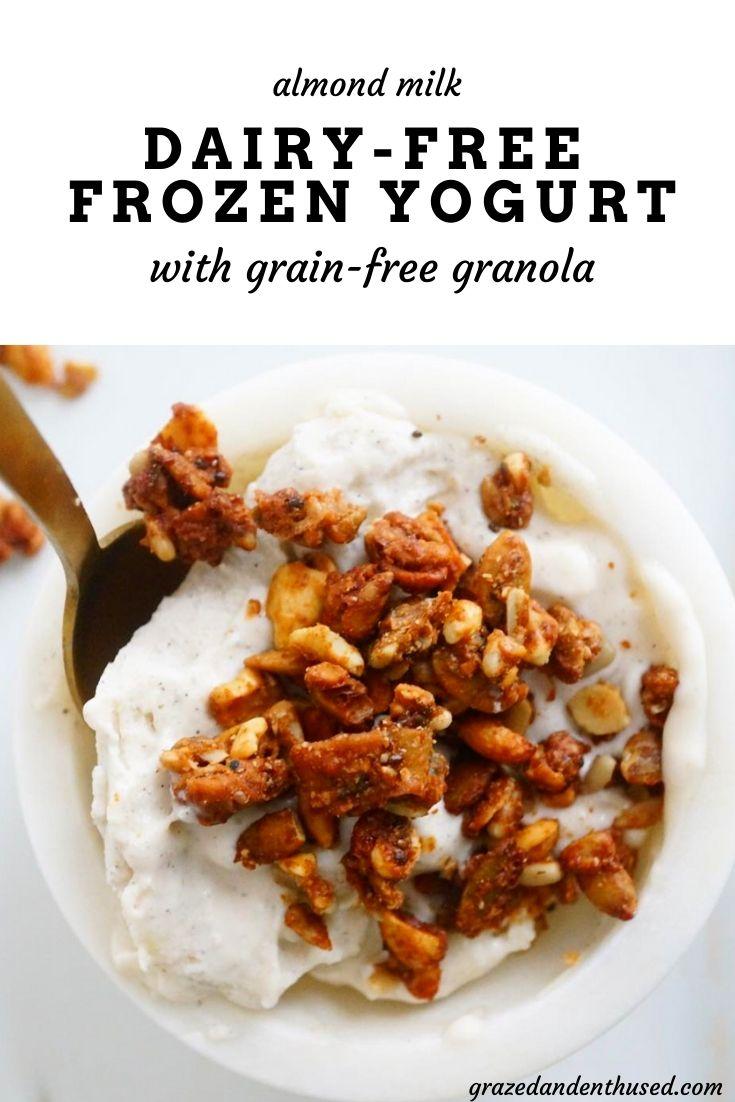 dairy-free frozen yogurt paleo