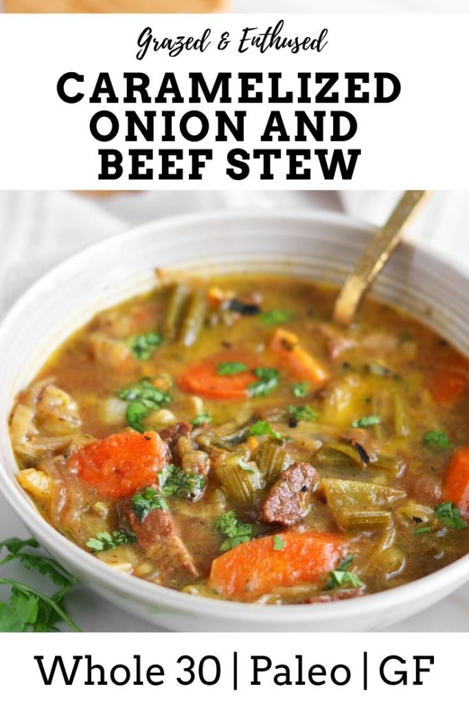 caramelized onion beef stew pin