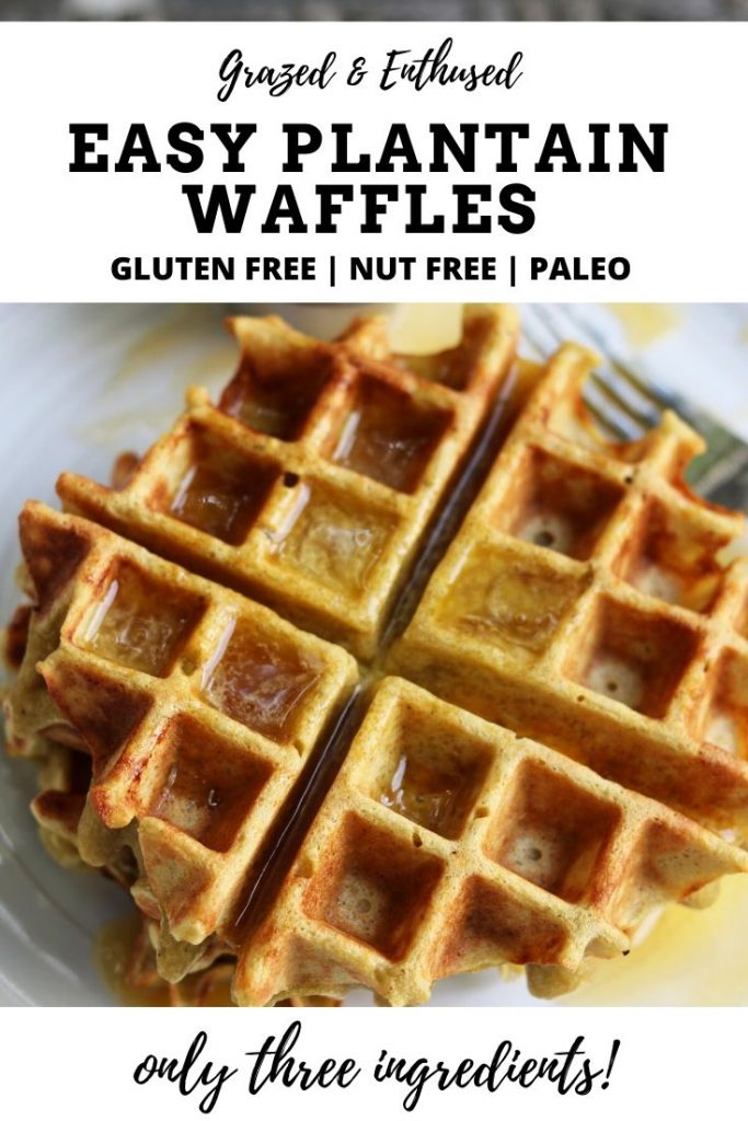 Easy Plantain Waffles Paleo