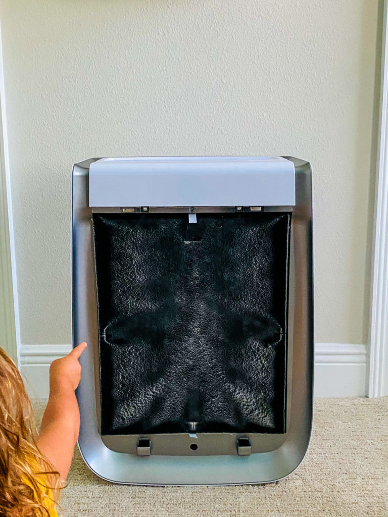 Air doctor review