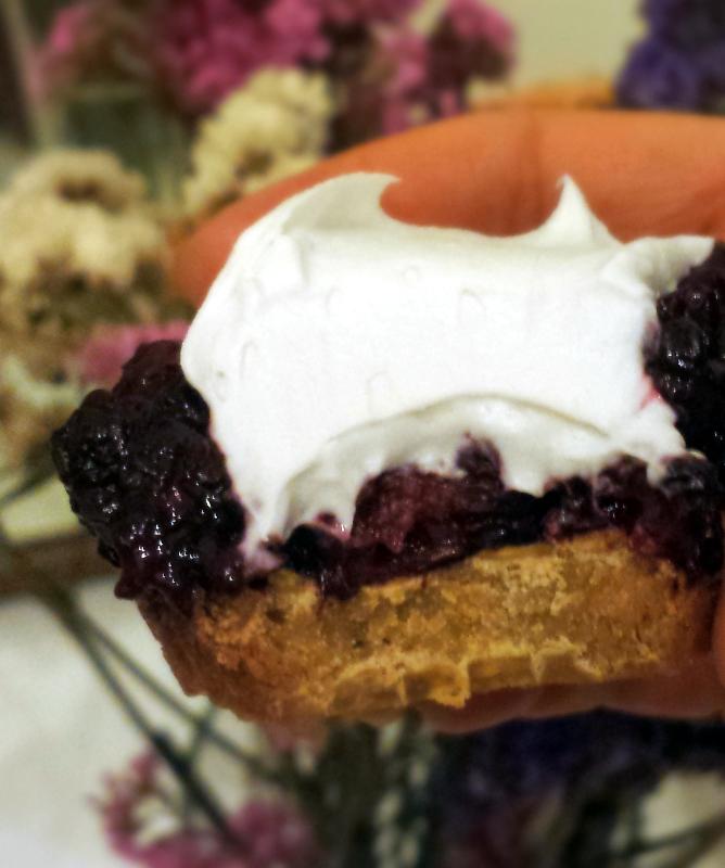 paleo blackberry mini tarts vegan